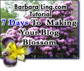 7 Days to Making Your Blog Blossom