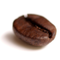 120px-Coffee_bean_transparent